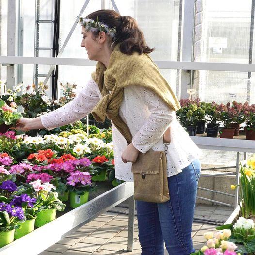 Damentaschen in Naturfarben